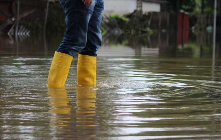 Why You Need a Pro to Handle Your Home Water Damage