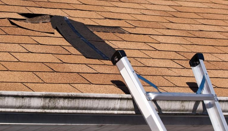 The Homeowner's Guide to Roof Insurance and Damage