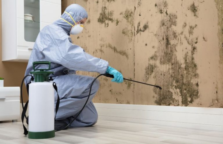Choosing a competent pest control service – Few tips for homeowners