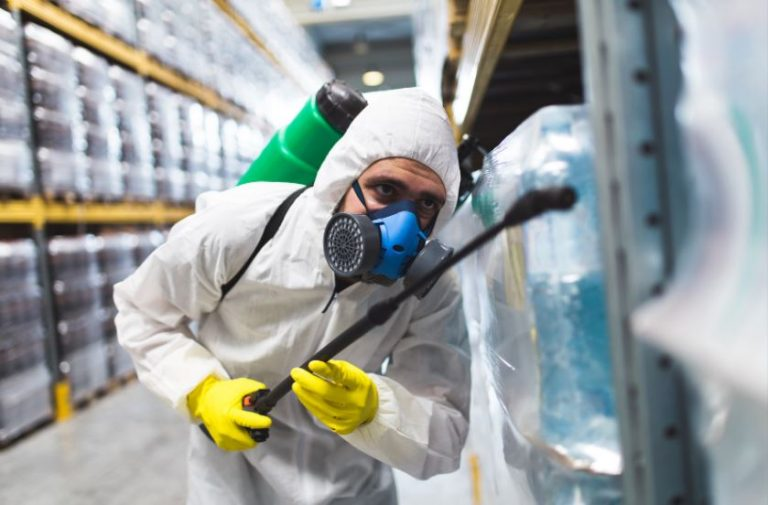 Top Considerations to Put in Mind When Hiring a Pest Control Company