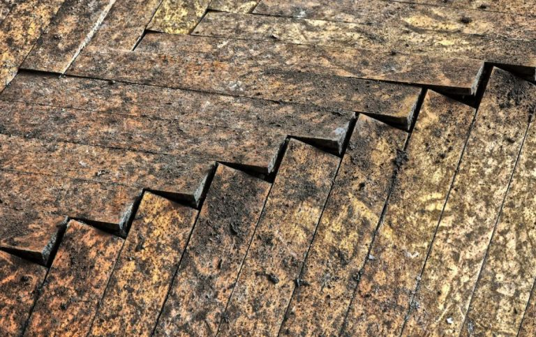 What Should You Do About Water Damaged Floor?